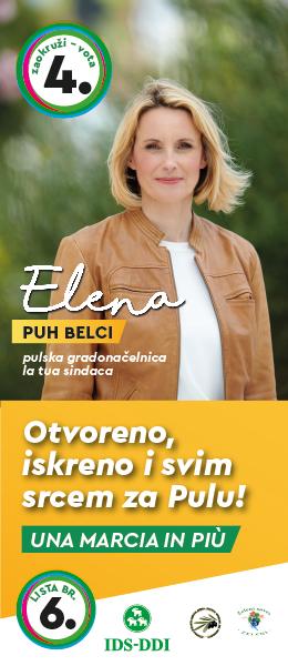 Elena - IDS